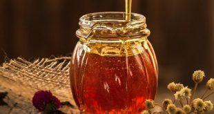 mật ong rừng nguyên chất